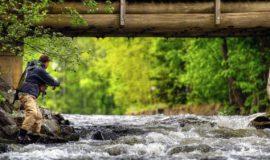 La pêche en Suisse romande